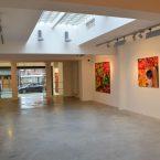 2016-2017 « Onirique »  Rasson Art Gallery, Tournai, Belgique.